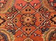 Herati Pattern on Rug