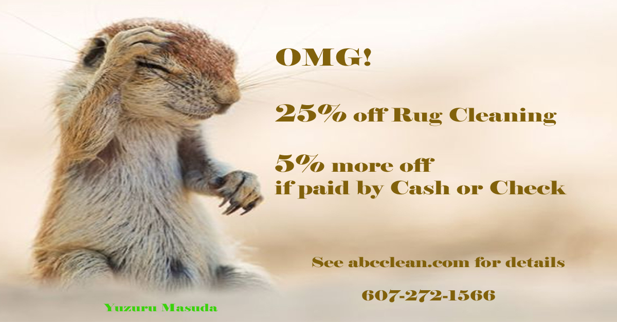 25% off + 5% off Area & Oriental Rug Cleaning