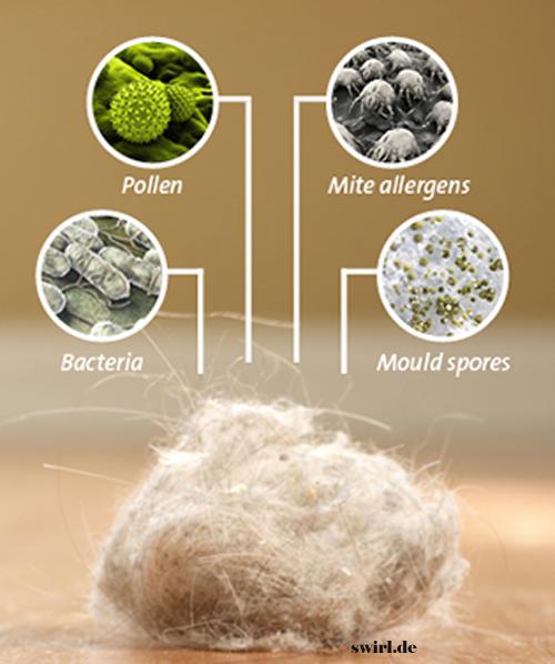 House Dust Allergens