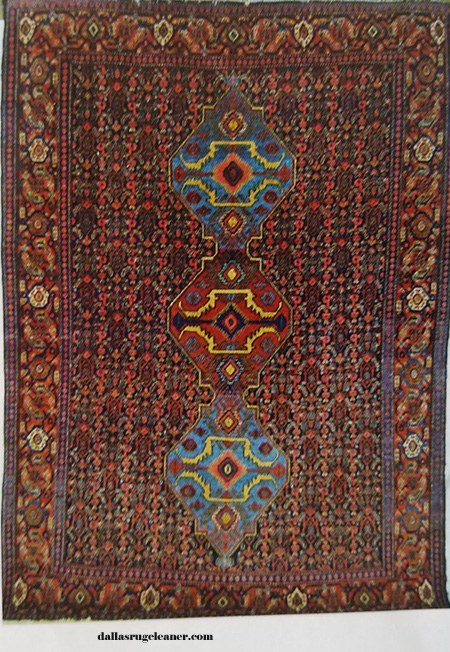 Senneh Oriental Rug