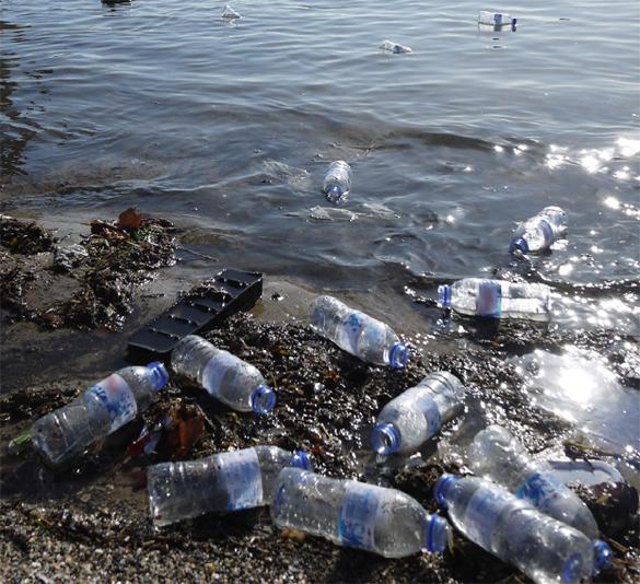 Empty Bottles on Beach