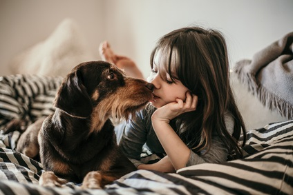 Girl With Dog On Bed