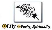 Lily Symbol