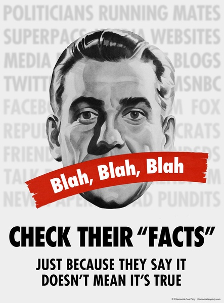 Check the Facts Poster