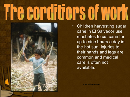 Child labor in sugar industry
