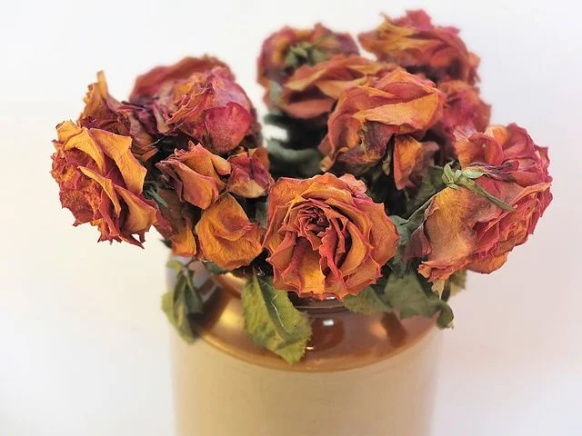 Dried Flower Arrangement