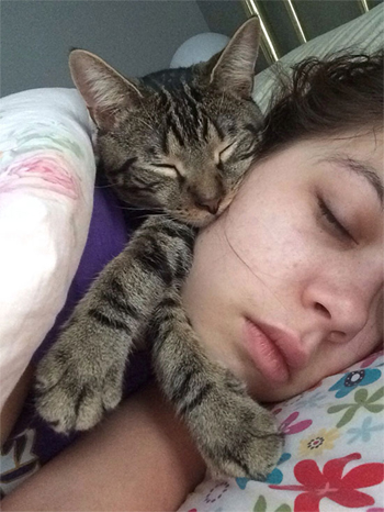 Cat and Girl Sleeping in Bed