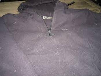 pet hair on clothing
