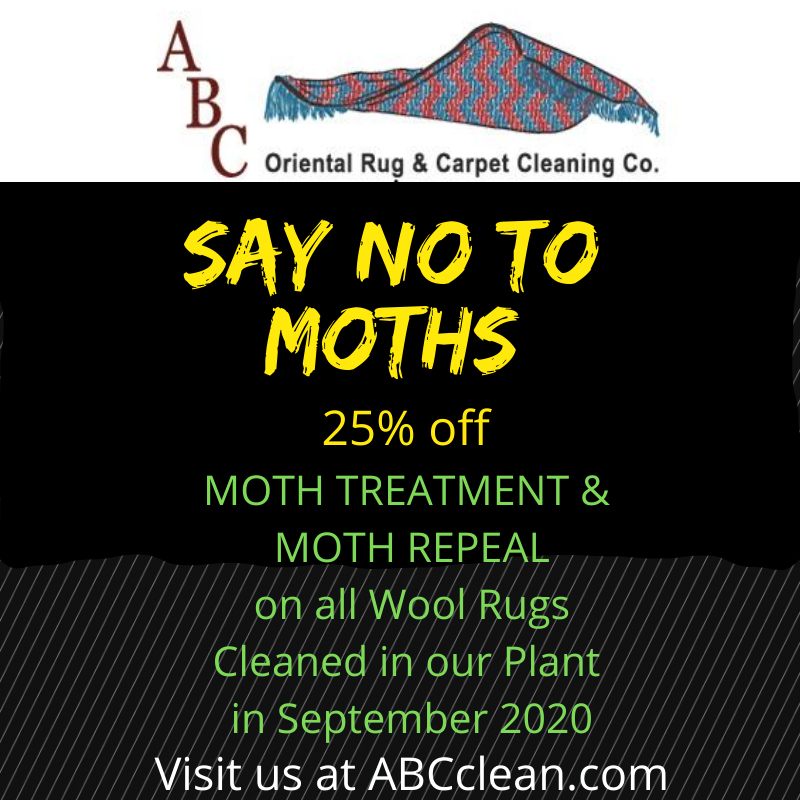 Say No to Moths!