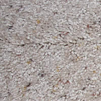 Saxony Textured Residential Carpet Style