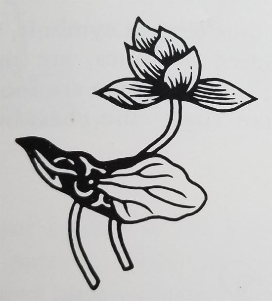 Tibetan Rug Design-The Lotus Flower