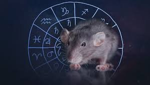 2020-Chinese Year of the Rat