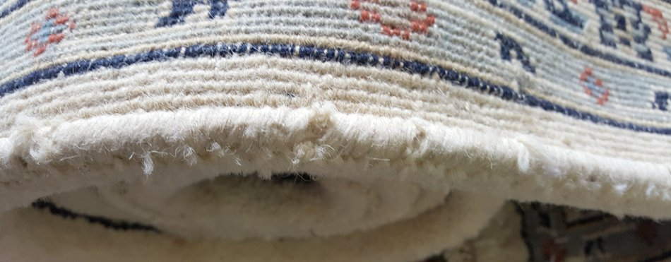 Textile Insects In Rugs What They Are And How To Prevent Them