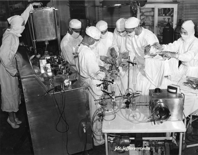 Testing of Gibbon's Machine on Dogs Prior to Humans - 1952