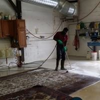 In Plant Rug Washing