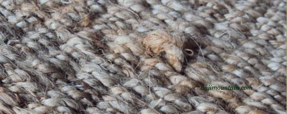 Sprouting on Natural Fiber Rug